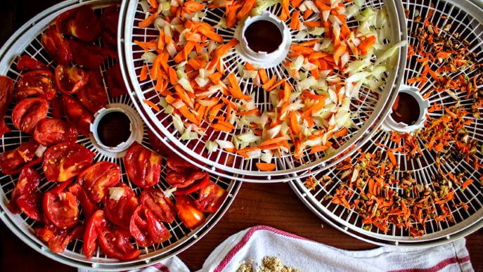 Advantages of Dehydrating The Food For any Healthier Method To Eat